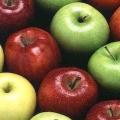 Хвороби яблуні: причини, лікування. Шкідники та хвороби яблуні