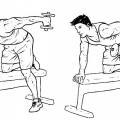 Як накачати трицепс в домашніх умовах: ефективні вправи