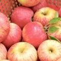 Як зробити брагу з яблук? Рецепт браги для самогону