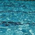 Обсяг і щільність води в різних умовах