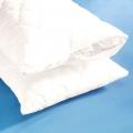Подушки з бамбука - відгуки. Правильний догляд за подушками з бамбука