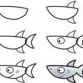 Прості уроки малювання: як намалювати акулу