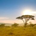 Африка: природні зони і клімат