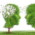 Хвороба Альцгеймера: причини, симптоми і лікування. Хвороба Альцгеймера передається у спадок?