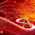 Кровоносна система людини. Що таке кровоносну судину?