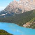 Північна америка: природні зони. Природні зони Північної Америки: таблиця