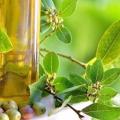 Оливкова олія. Користь очевидна