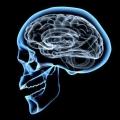Психоорганічний синдром: симптоми, стадії, лікування