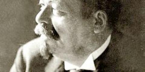 Президент германии, його положення і повноваження